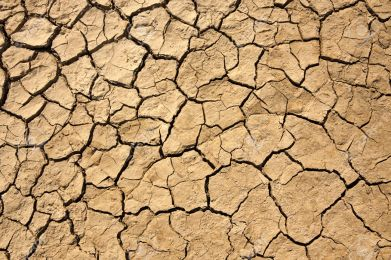 dried earth texture